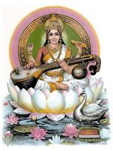 India Nieuwsbrief 2013