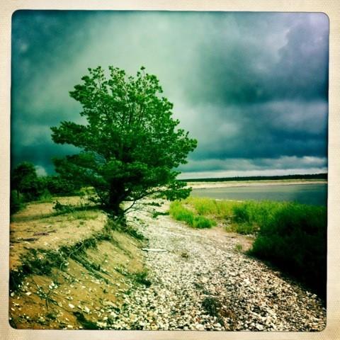 Onderweg in Estland