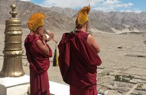 Ladakh (8 dagen)